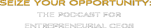 Seize Your Opportunity Podcast